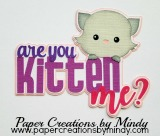 Are You Kitten Me Title Pink